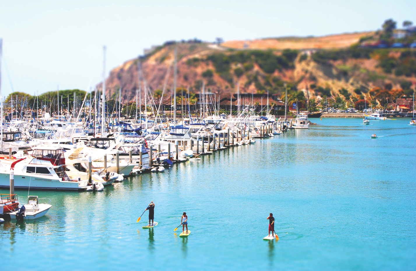 Dana Point Harbor Excursions - paddle boarding through the harbor